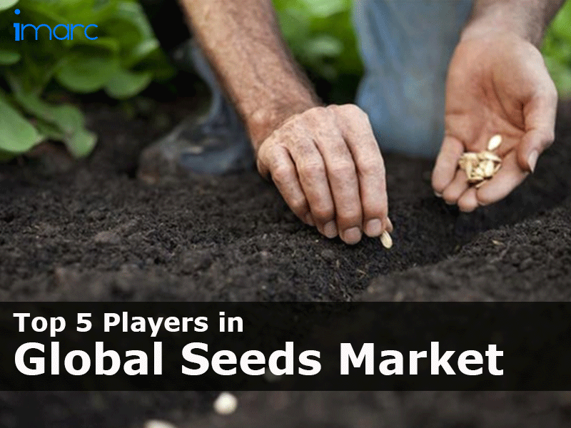 Top Seed Market Manufacturers