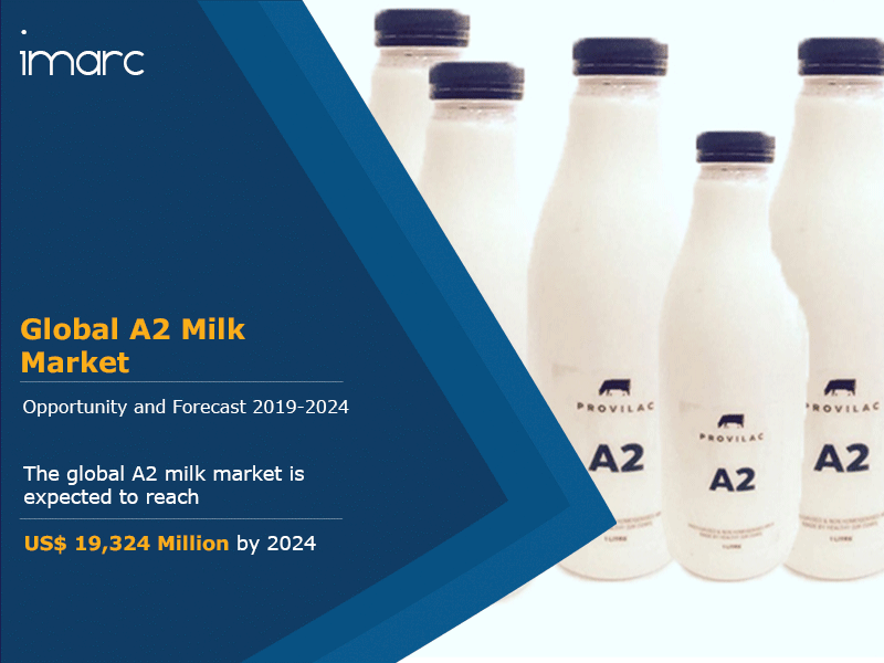 A2 Milk Market Report