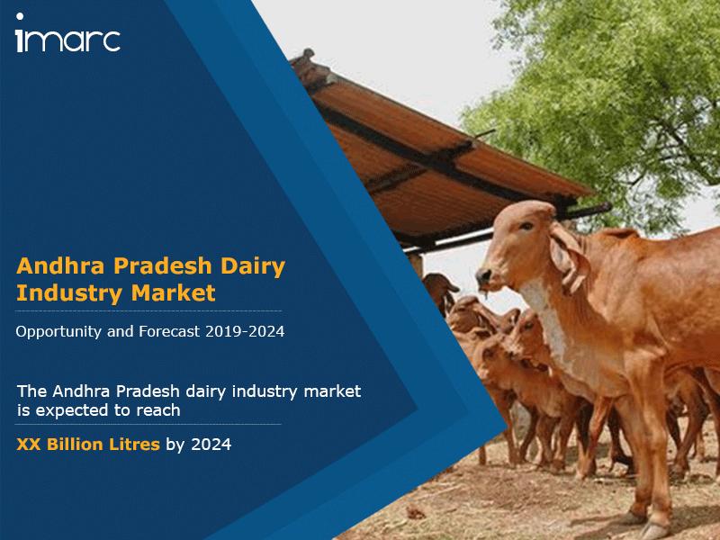 Andhra Pradesh Dairy Market Market