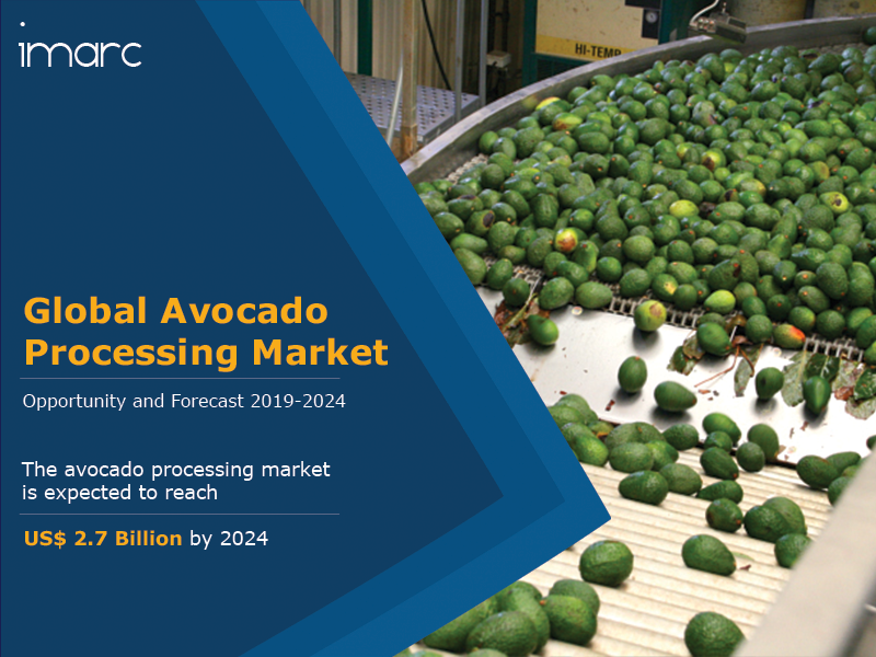 Avocado Processing Market report