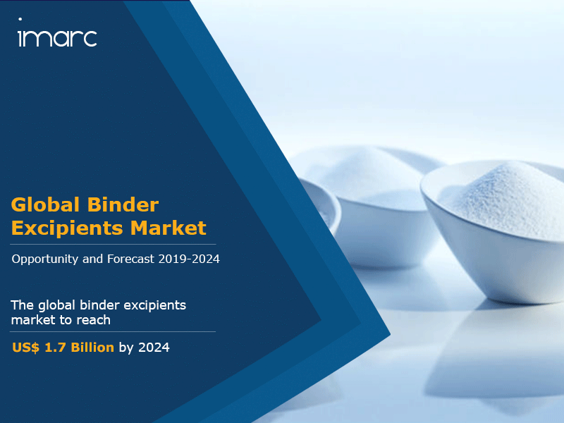 Global Binder Excipients Market