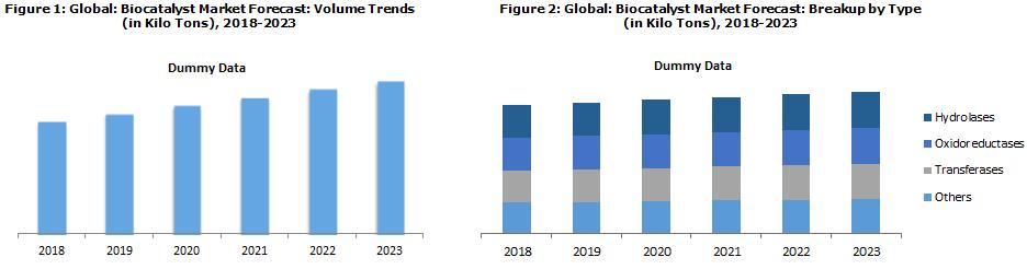 Biocatalyst Market Report