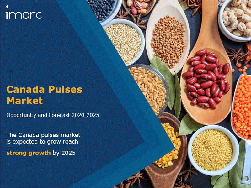 Canada Pulses Market