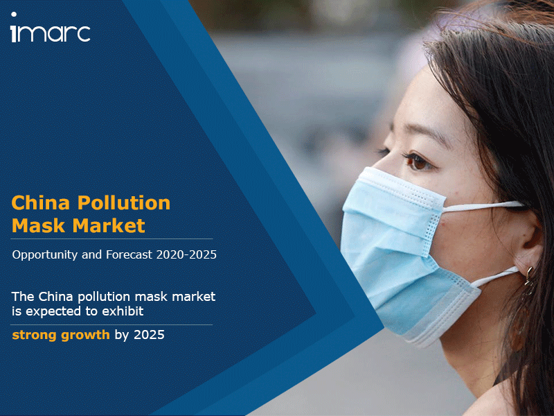 China Pollution Mask Market