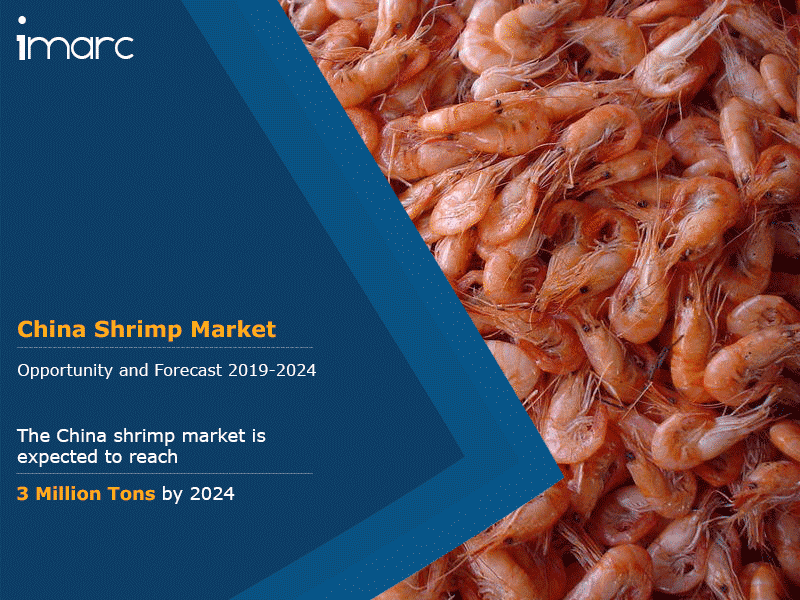 China Shrimp Market Report