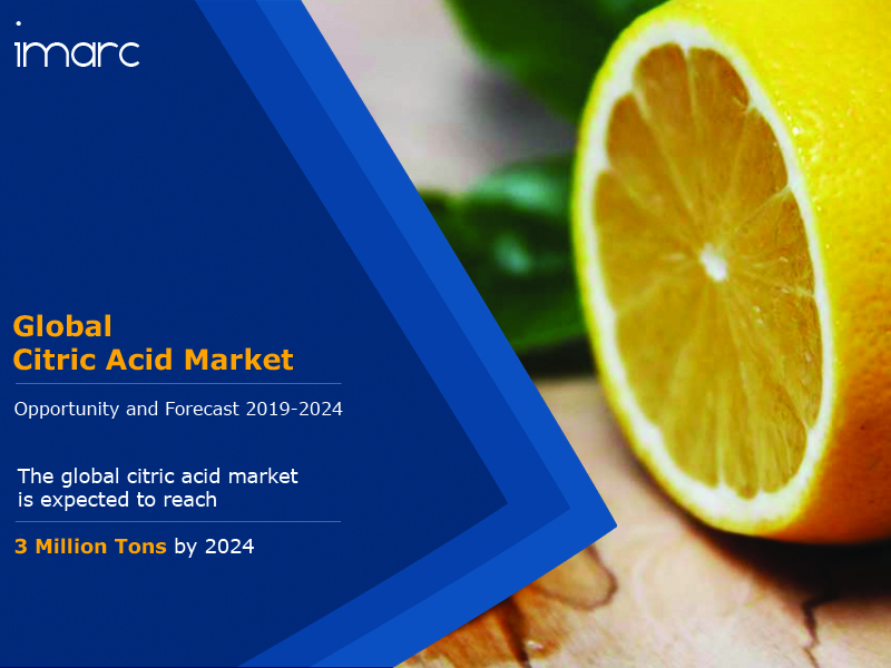 Citric Acid Market Report