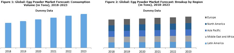 Egg Powder Market Trends