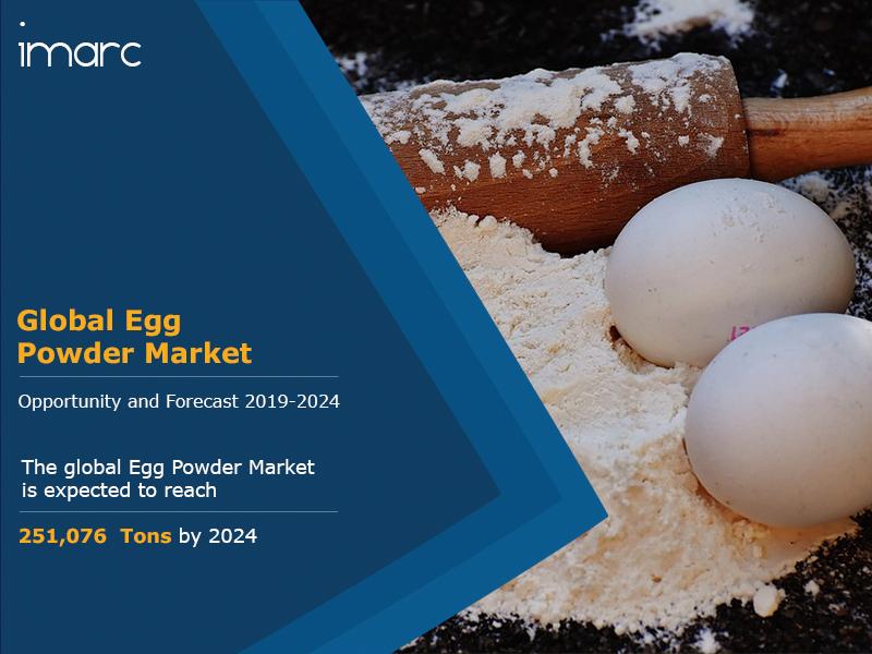 Egg powder Market report