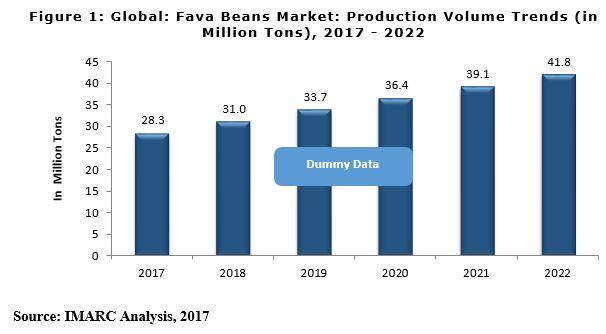 fava beans market