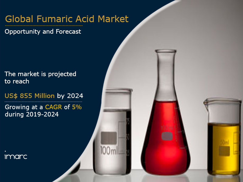 Fumaric Acid Market By Report