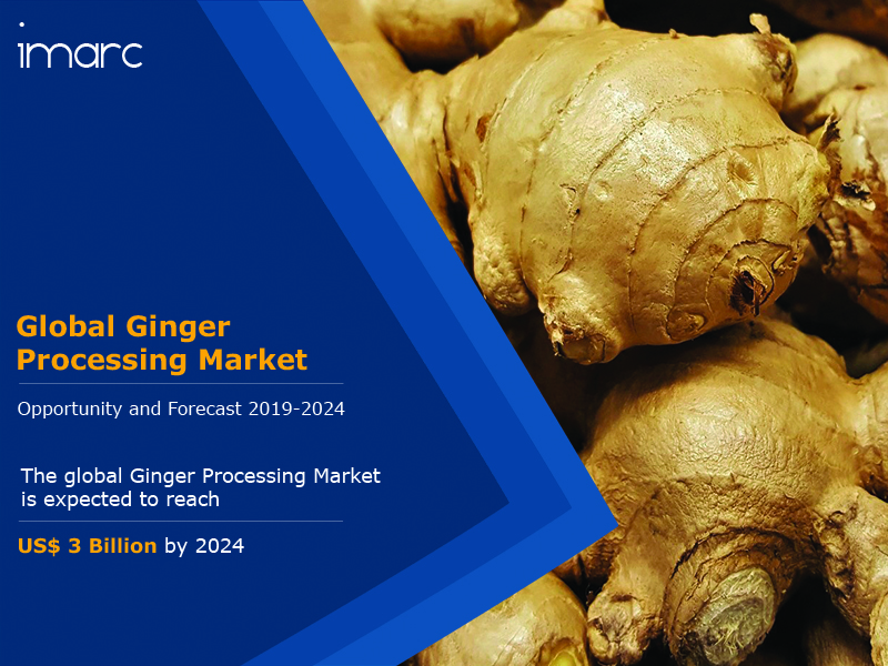 Ginger Processing Industry Report