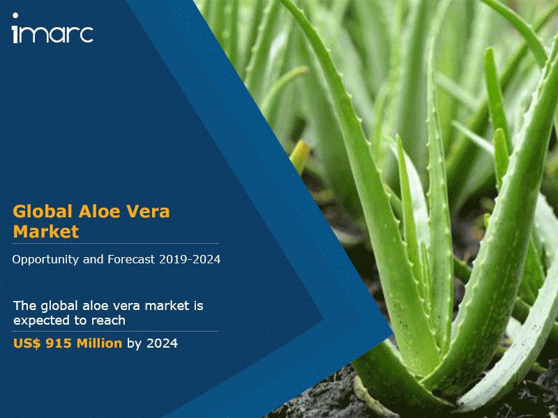 Global Aloe Vera Market Report