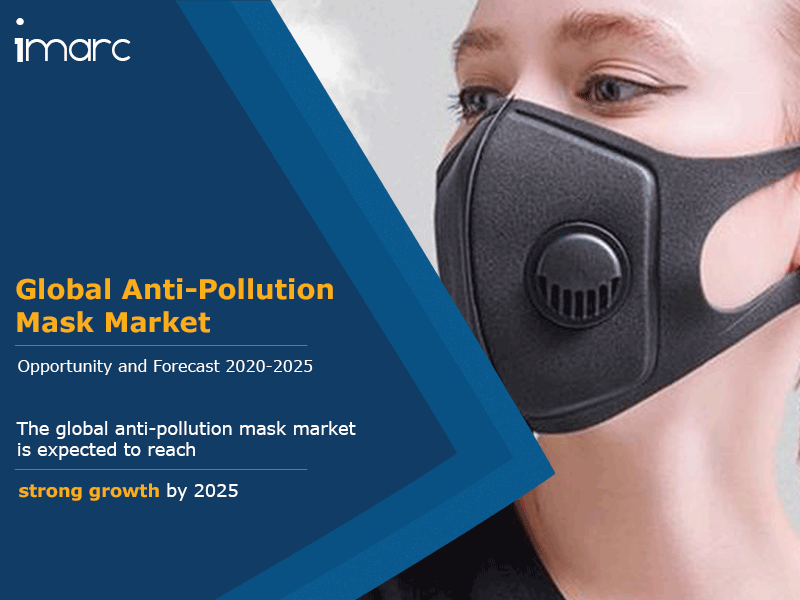 Global Anti Pollution Mask Market