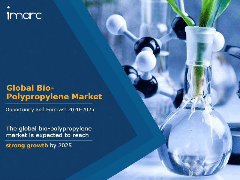 Global Bio Polypropylene Market