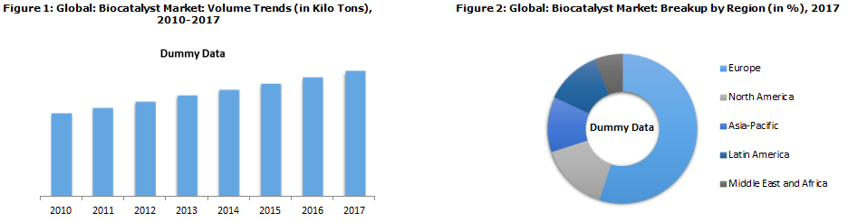 Global Biocatalyst Market