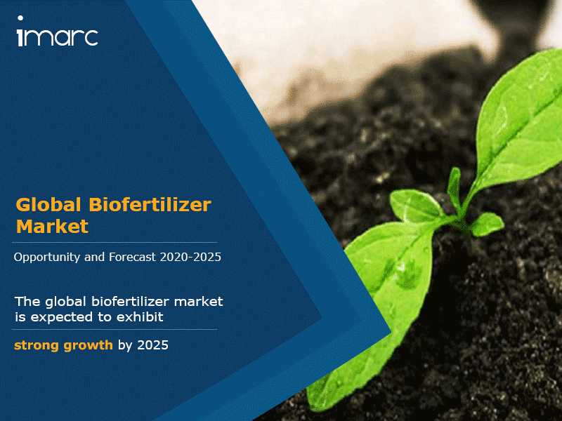 Global Biofertilizer Market