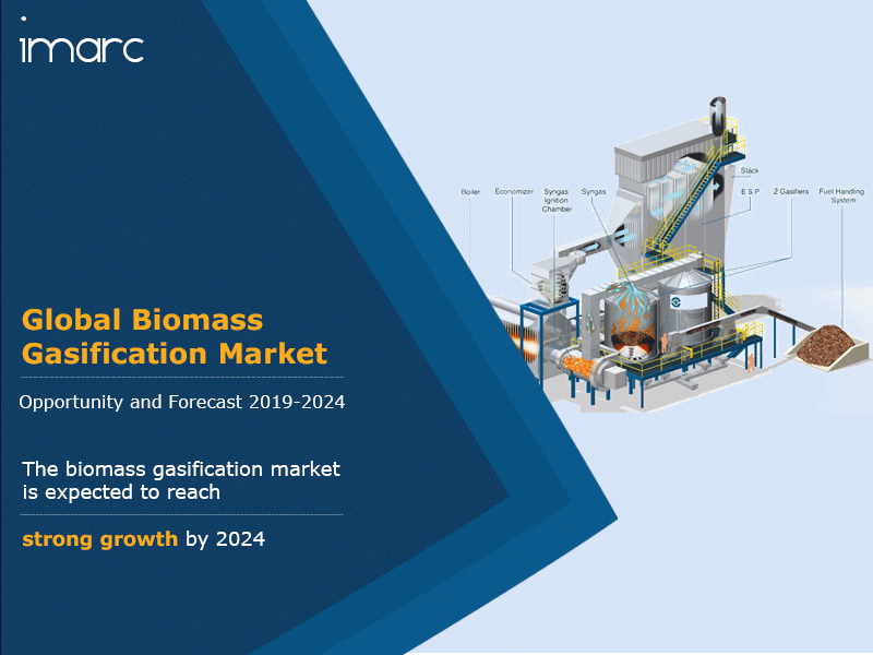 Global Biomass Gasification Market Report