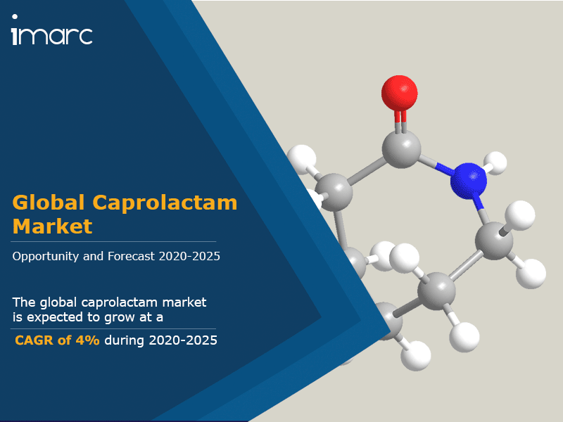 Global Caprolactam Market