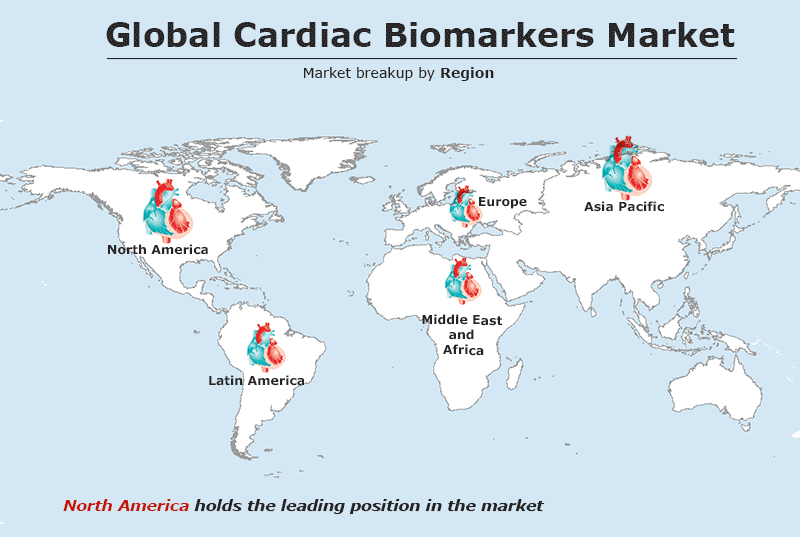 Global Cardiac Biomarkers Market