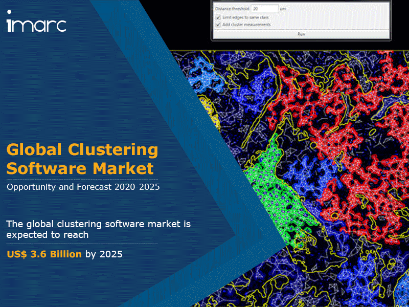 Global Clustering Software Market