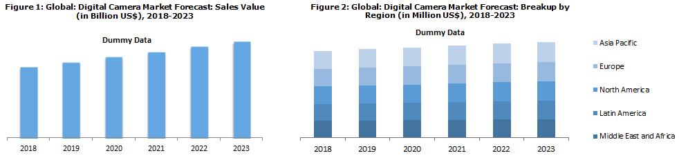 Global Digital Camera Market