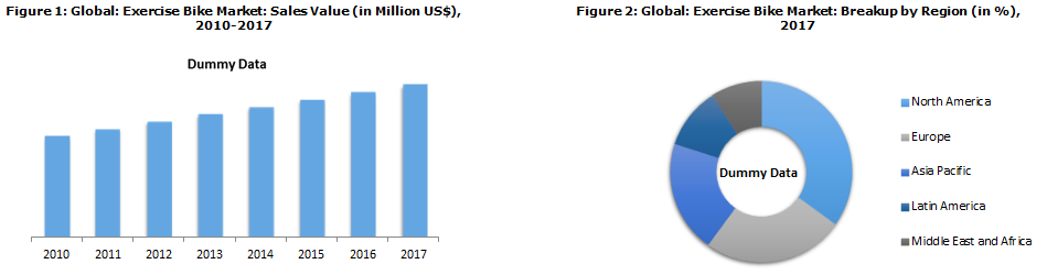 Global Exercise Bike Market