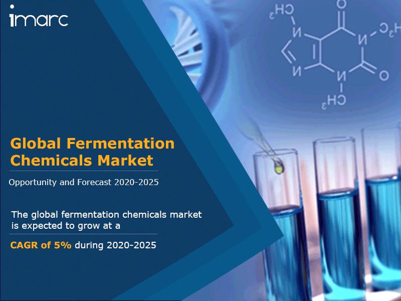 Global Fermentation Chemicals Market