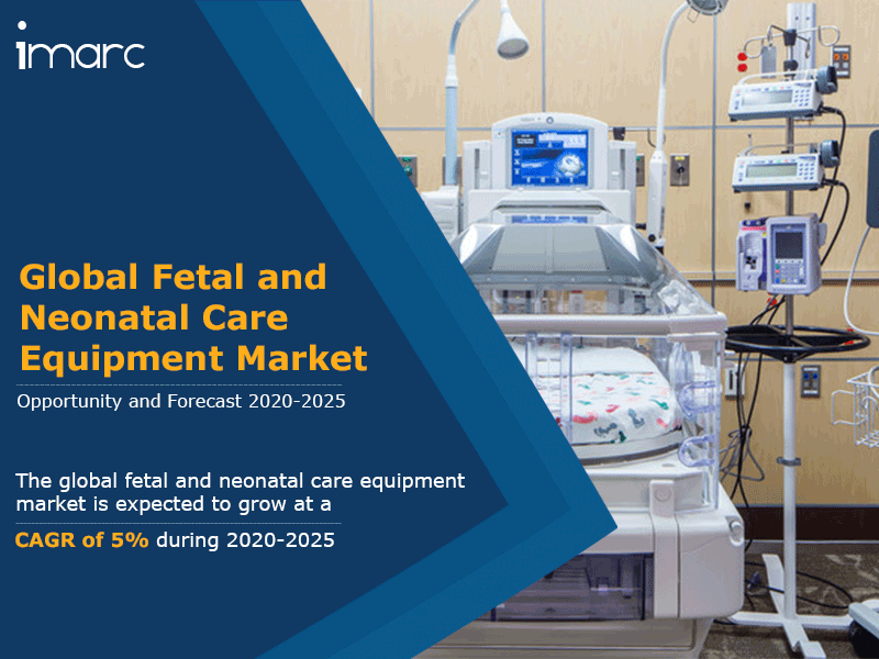 Global Fetal And Neonatal Care Equipment Market