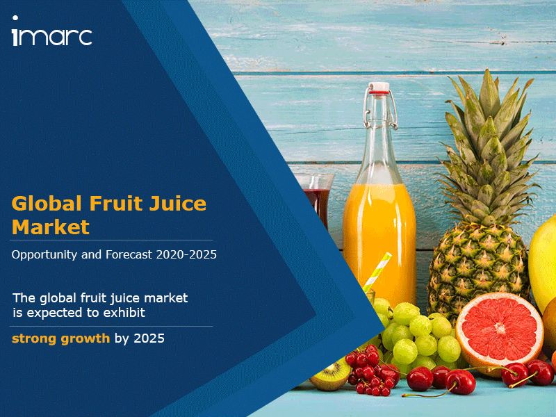 Global Fruit Juice Market Report