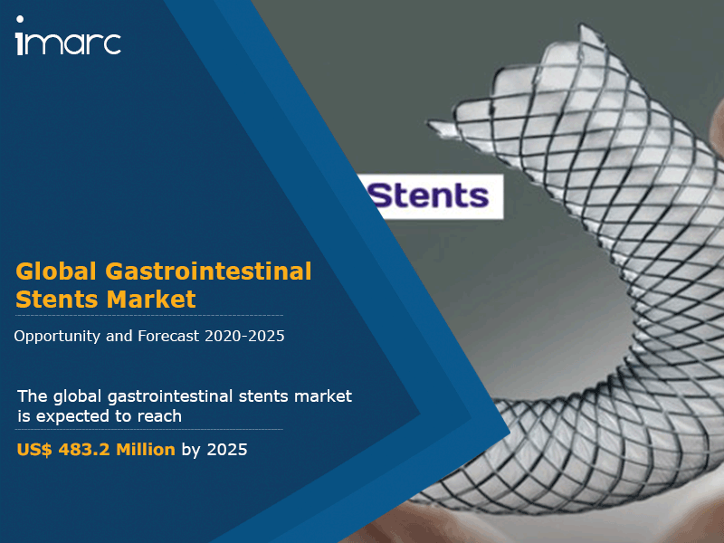 Global Gastrointestinal Stents Market
