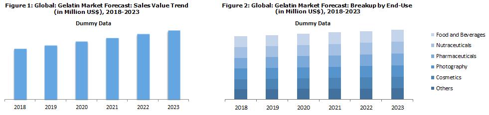 Global Gelatin Market