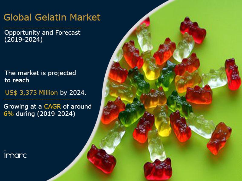 Gelatin Market Report