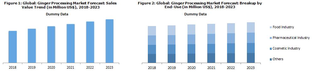 Global Ginger Processing Market Forecast