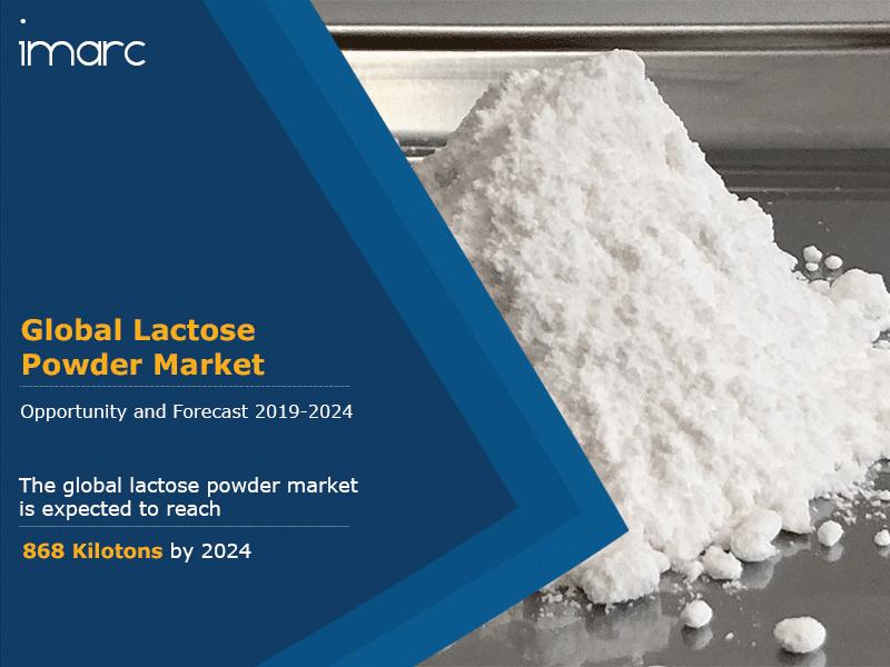 Global Lactose Powder Market Report