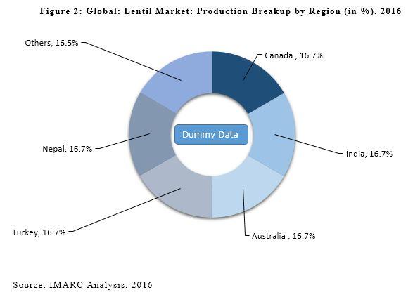 global lentil market