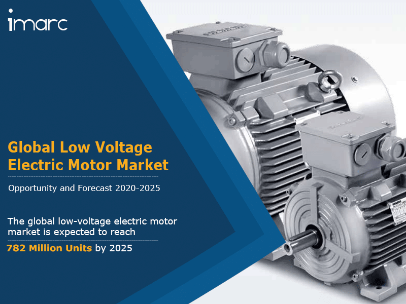 Global Low Voltage Electric Motor Market