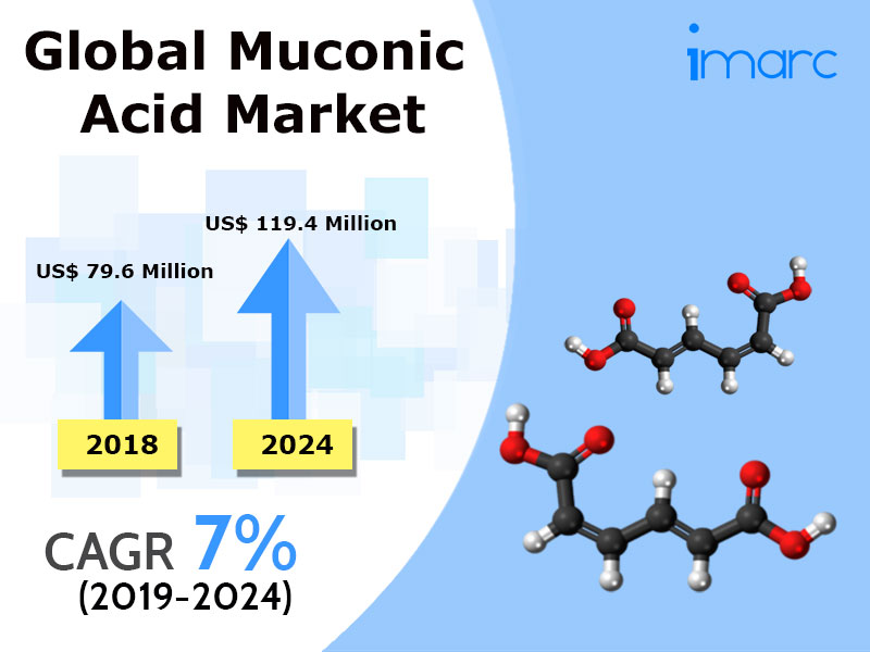 Global Muconic Acid Market