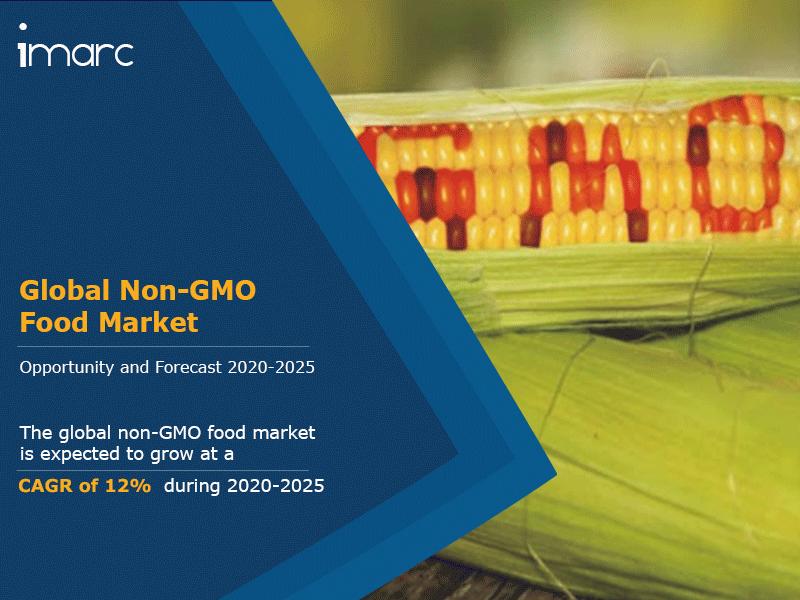 Global Non GMO Food Market