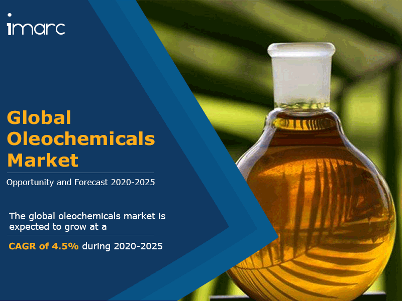Global Oleochemicals Market