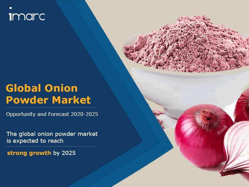 Onion Powder Market Report