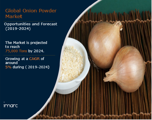 Onion Powder Market Report