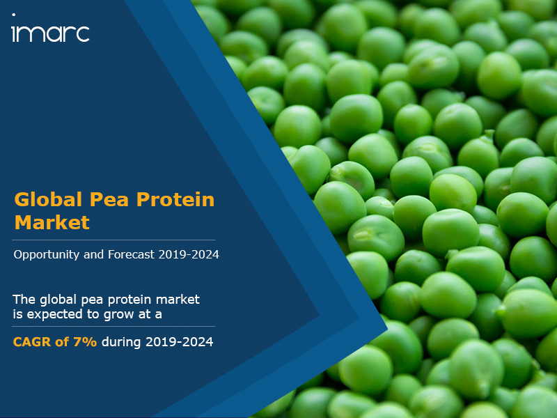 Global Pea Protein Market Report