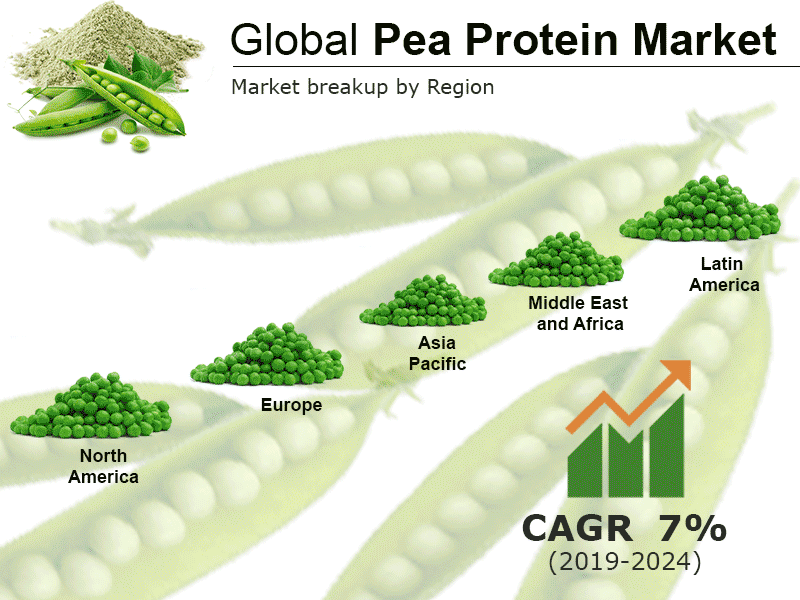 Global Pea Protein Market