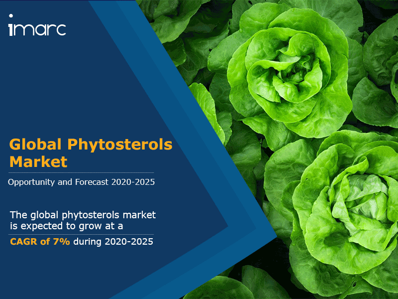 Global Phytosterols Market Report