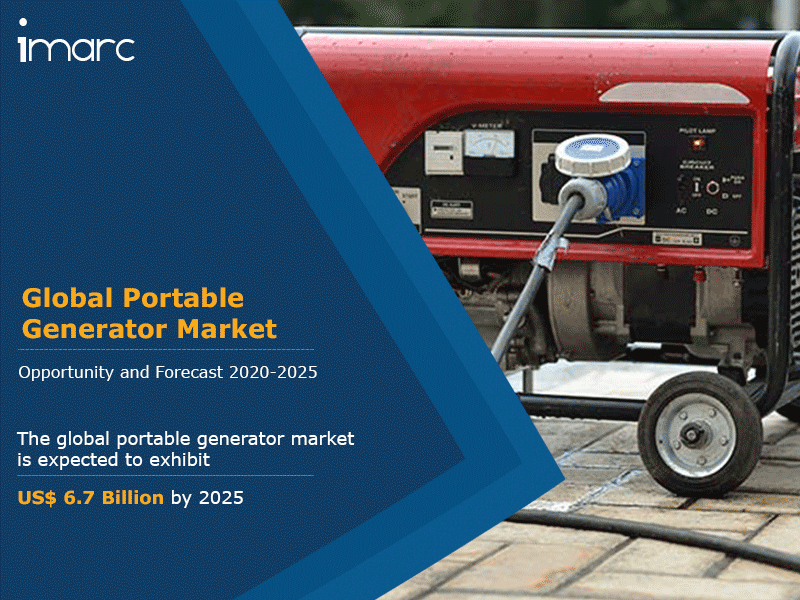 Global Portable Generator Market