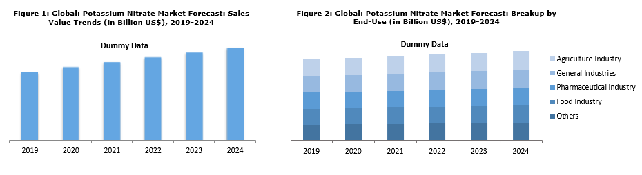 Global Potassium Nitrate Market Bolstered by Demand for High-Capacity Rechargeable Batteries