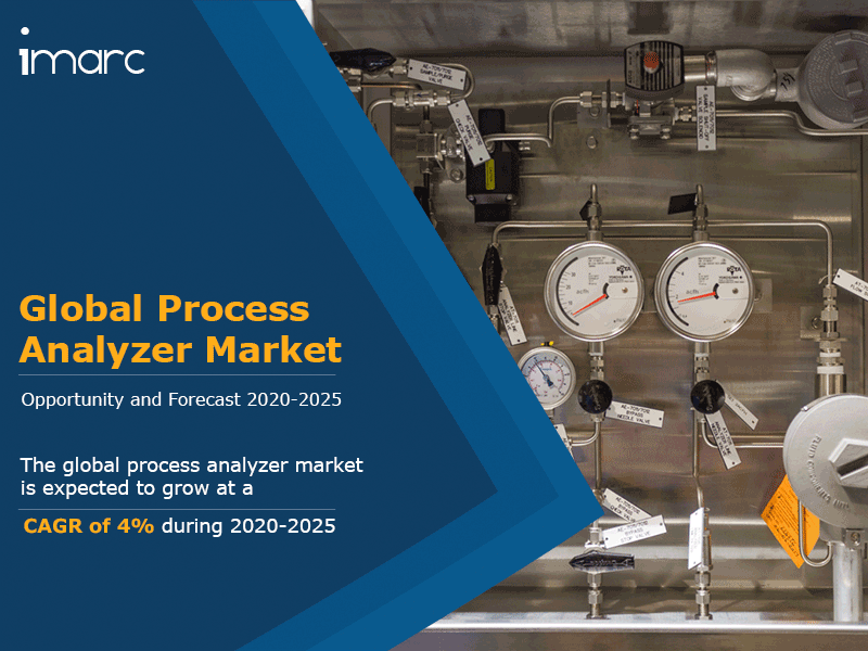 Global Process Analyzer Market