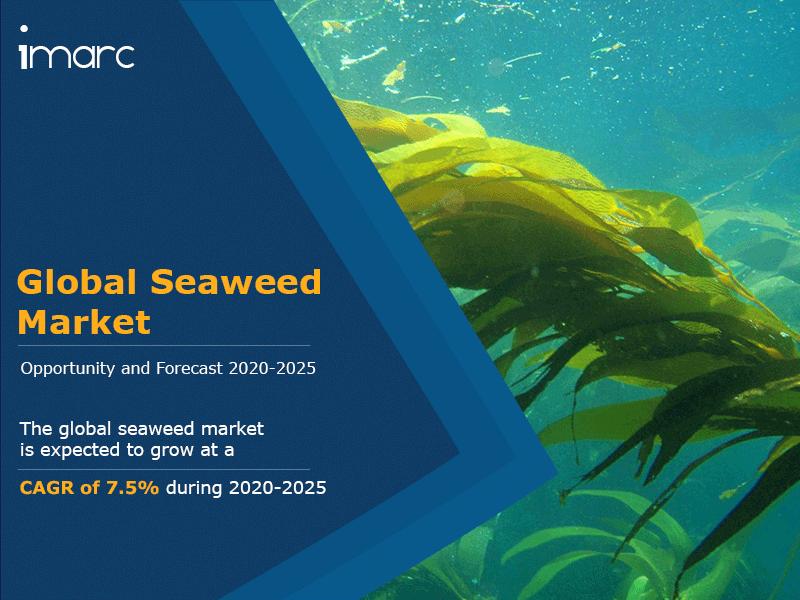 Global Seaweed Market Report