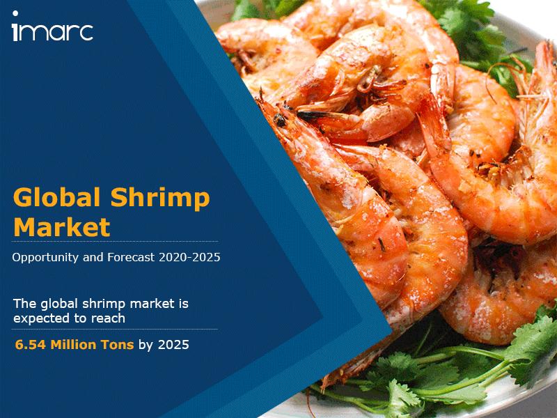 Shrimp Market Report