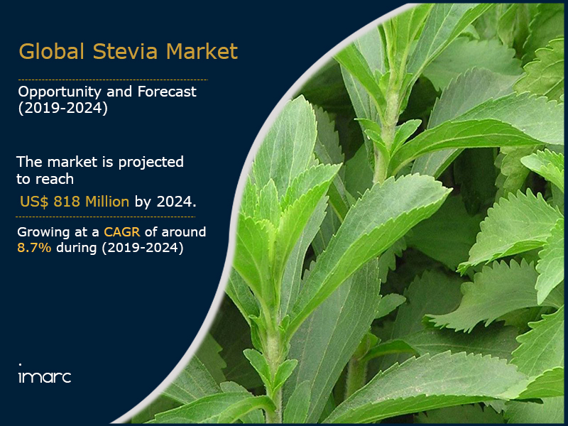 Global Stevia Market Report